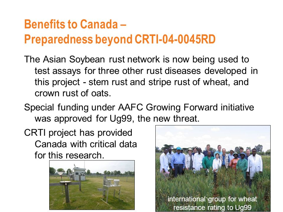 Benefits to Canada – Preparedness beyond CRTI-04-0045RD The Asian Soybean rust network is now being used to test assays for three other rust diseases developed in this project - stem rust and stripe rust of wheat, and crown rust of oats.