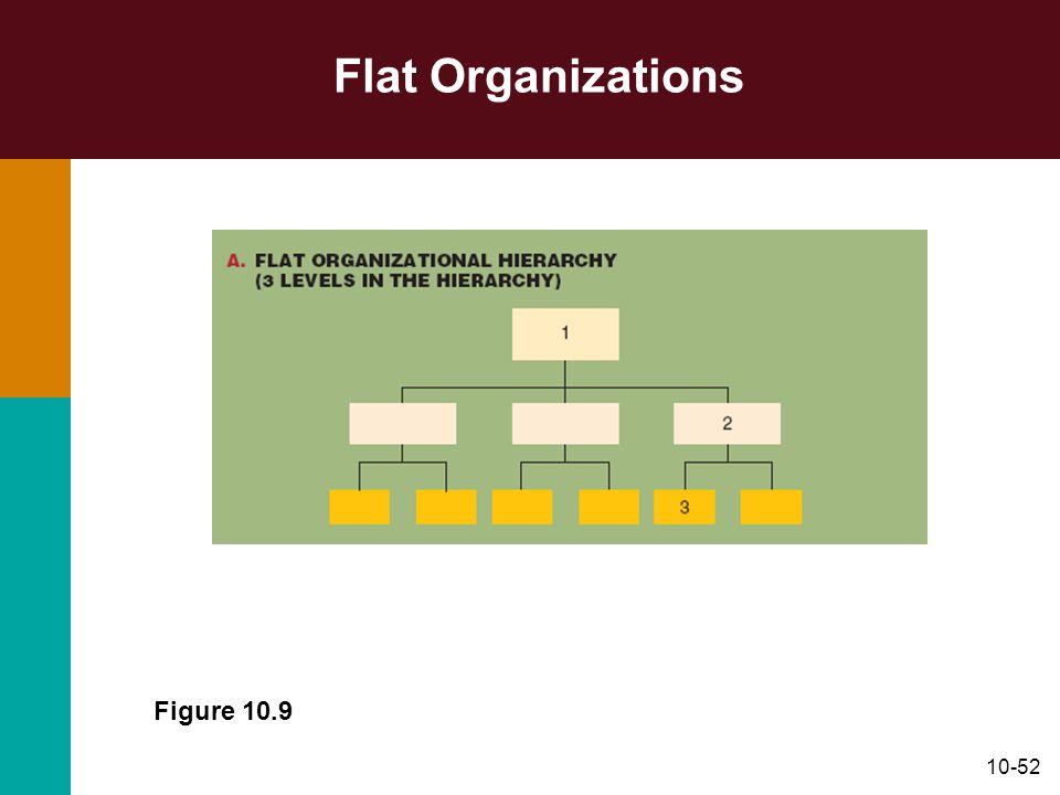 10-52 Flat Organizations Figure 10.9