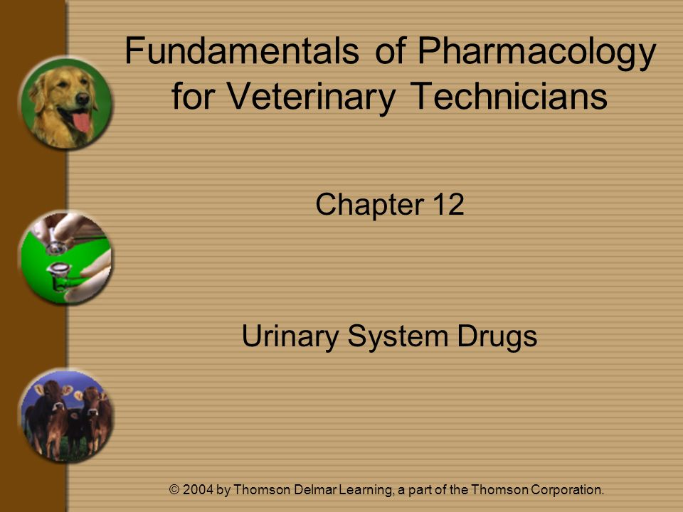 © 2004 by Thomson Delmar Learning, a part of the Thomson Corporation. Fundamentals of Pharmacology for Veterinary Technicians Chapter 12 Urinary Syste