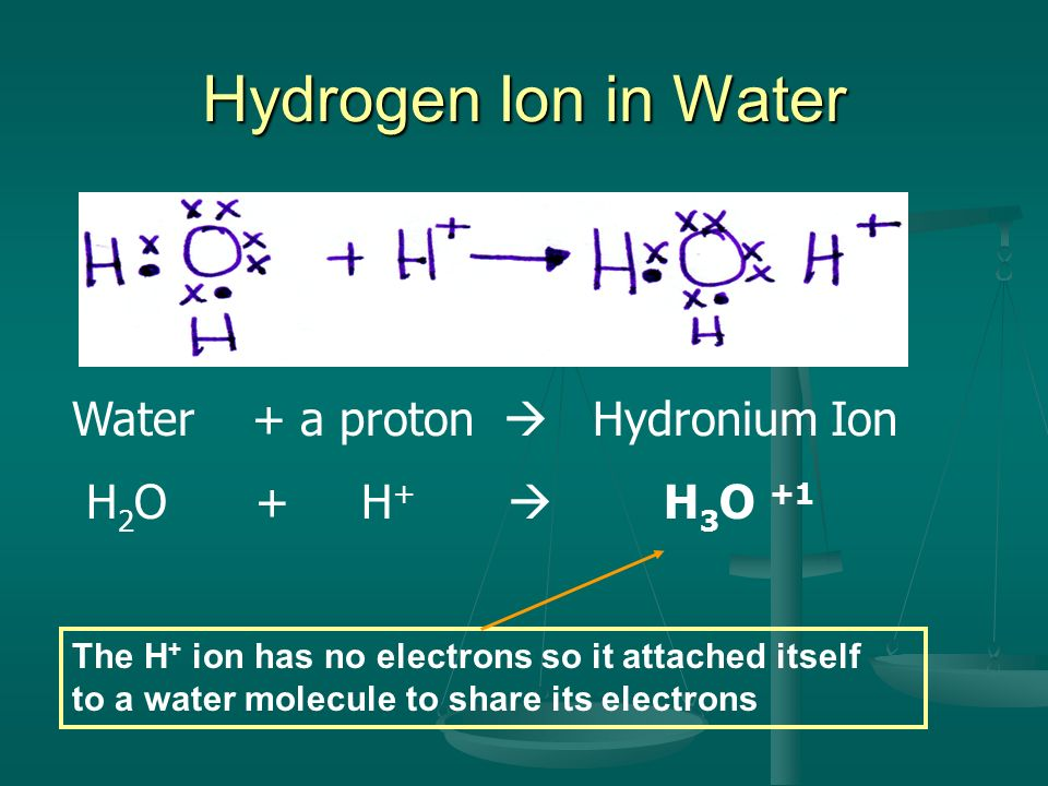 Hydrogen Ion in Water Water + a proton Hydronium Ion H 2 O + H + H 3 O +1 The H + ion has no electrons so it attached itself to a water molecule to sh