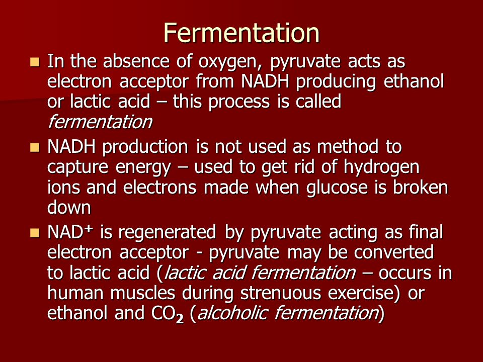 Fermentation In the absence of oxygen, pyruvate acts as electron acceptor from NADH producing ethanol or lactic acid – this process is called fermenta