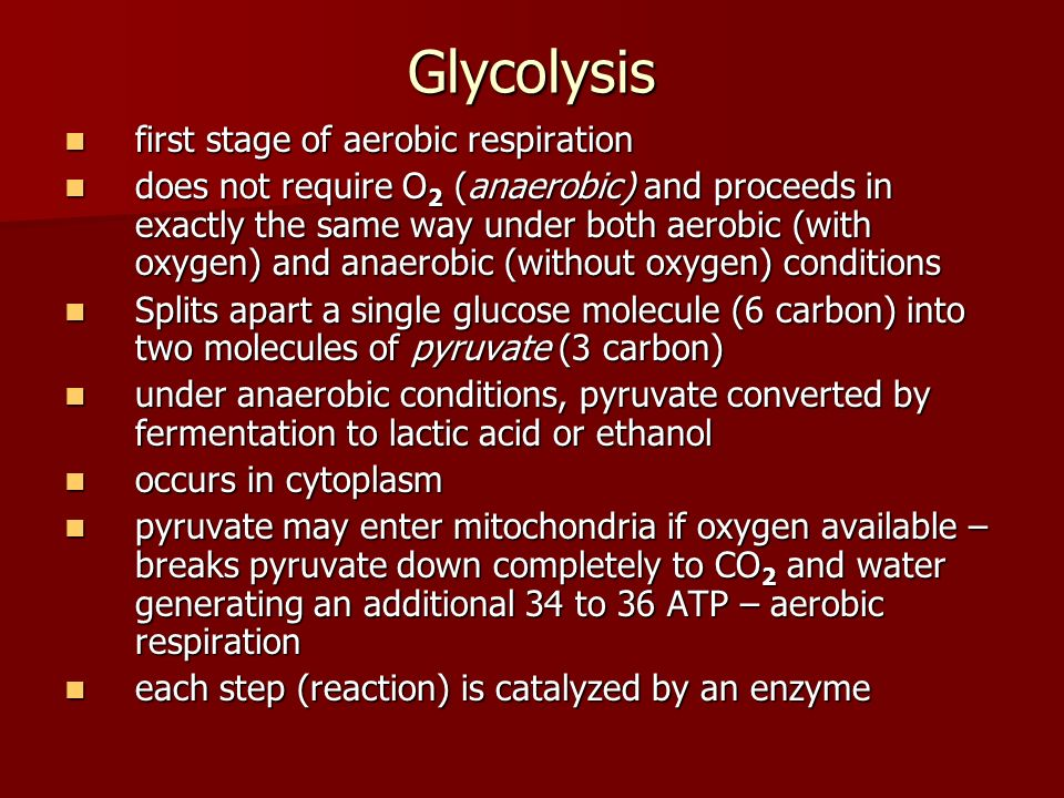 Glycolysis first stage of aerobic respiration first stage of aerobic respiration does not require O 2 (anaerobic) and proceeds in exactly the same way