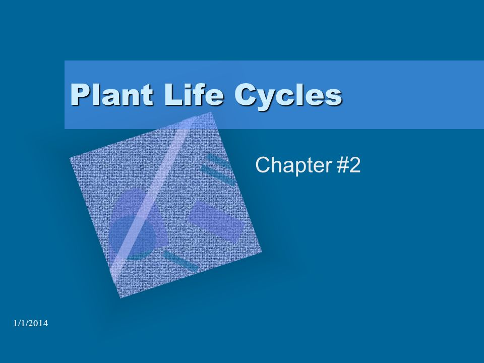 1/1/2014 Plant Life Cycles Chapter #2