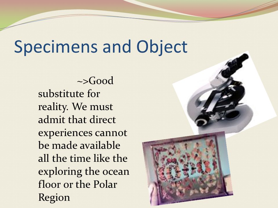 Three Dimensional Instructional Materials Specimens and Objects Model and Mock-UpsThe Globe