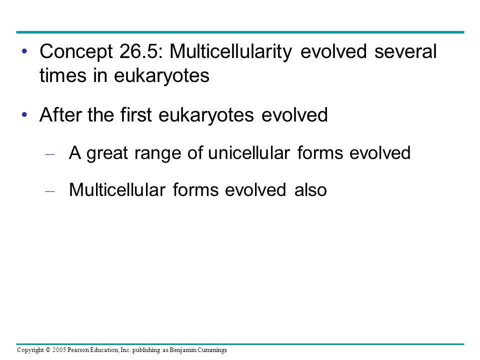 Copyright © 2005 Pearson Education, Inc. publishing as Benjamin Cummings Concept 26.5: Multicellularity evolved several times in eukaryotes After the