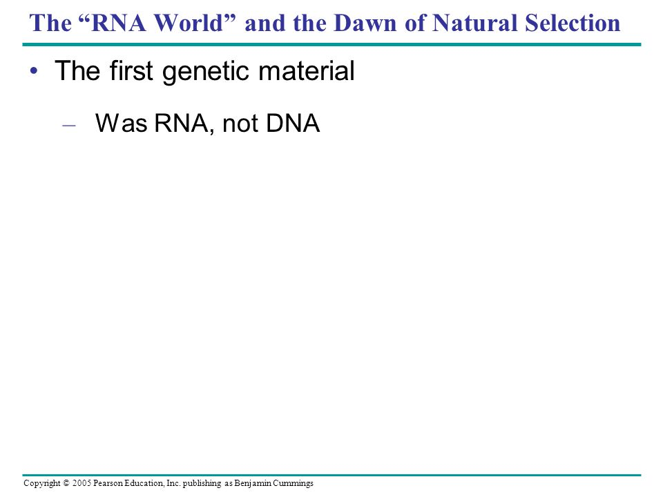 Copyright © 2005 Pearson Education, Inc. publishing as Benjamin Cummings The RNA World and the Dawn of Natural Selection The first genetic material –