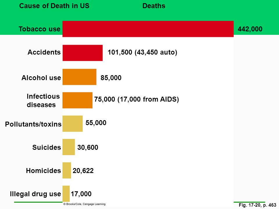 Fig. 17-20, p. 463 Cause of Death in USDeaths Tobacco use442,000 Accidents101,500 (43,450 auto) Alcohol use85,000 Infectious diseases 75,000 (17,000 f