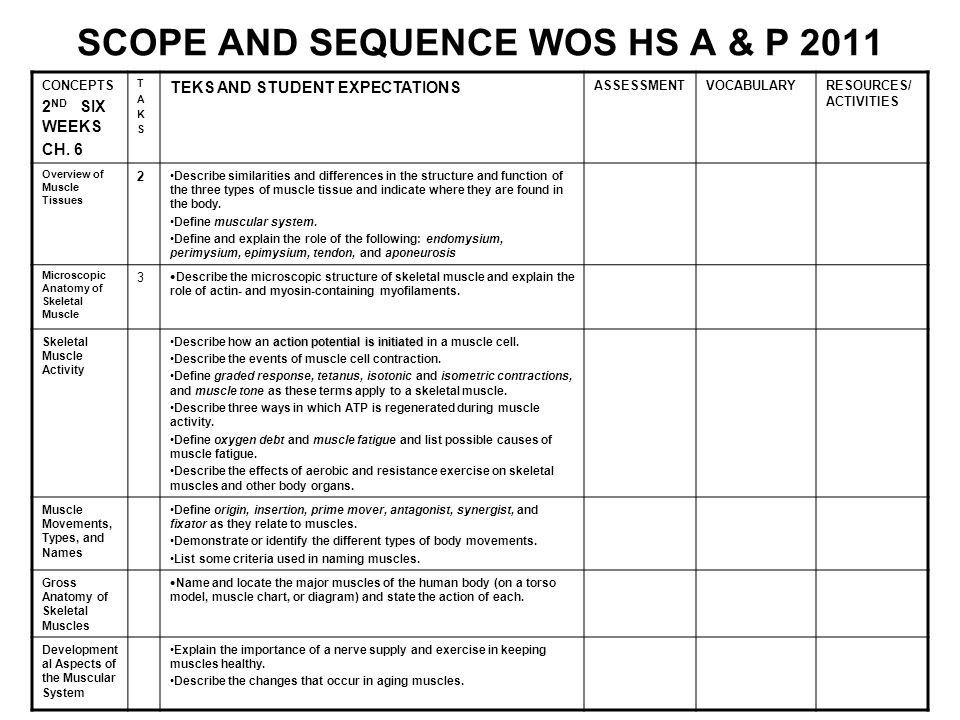 SCOPE AND SEQUENCE WOS HS A & P 2011 CONCEPTS 2 ND SIX WEEKS CH. 6 TAKSTAKS TEKS AND STUDENT EXPECTATIONS ASSESSMENTVOCABULARYRESOURCES/ ACTIVITIES Ov