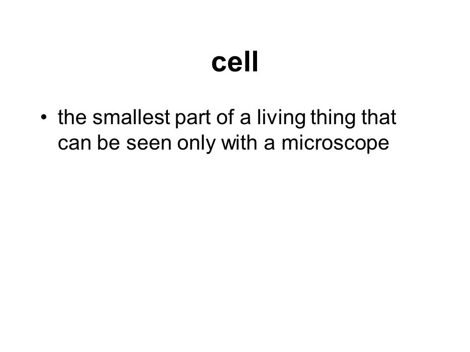 chloroplast the part of a plant cell that produces food and where photosynthesis occurs