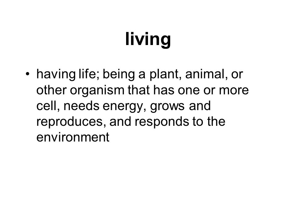 living having life; being a plant, animal, or other organism that has one or more cell, needs energy, grows and reproduces, and responds to the enviro