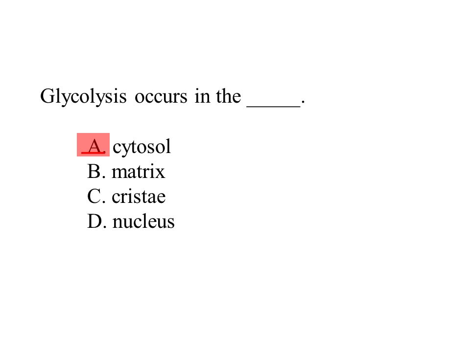Glycolysis occurs in the _____. A. cytosol B. matrix C. cristae D. nucleus ___