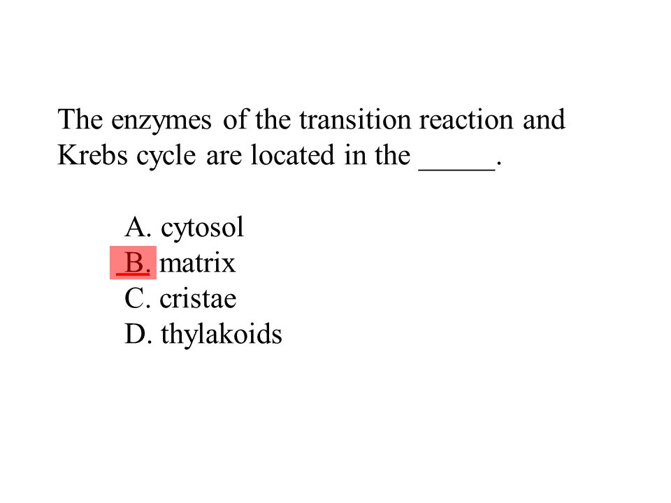 The enzymes of the transition reaction and Krebs cycle are located in the _____. A. cytosol B. matrix C. cristae D. thylakoids ___