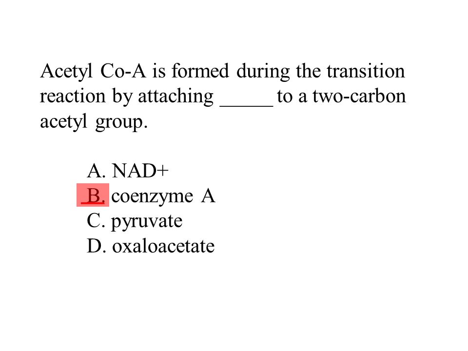 Acetyl Co-A is formed during the transition reaction by attaching _____ to a two-carbon acetyl group. A. NAD+ B. coenzyme A C. pyruvate D. oxaloacetat