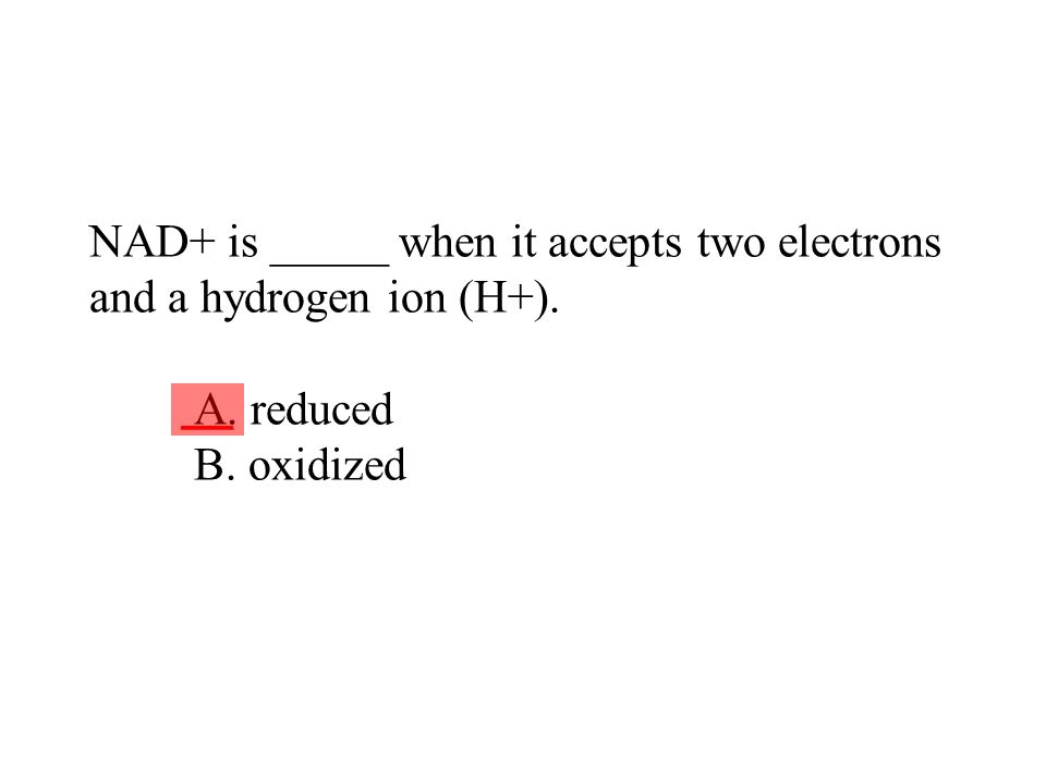 NAD+ is _____ when it accepts two electrons and a hydrogen ion (H+). A. reduced B. oxidized ___