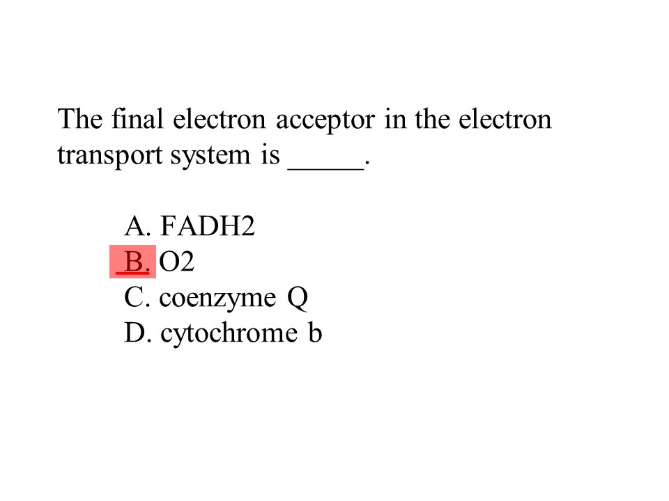 The final electron acceptor in the electron transport system is _____. A. FADH2 B. O2 C. coenzyme Q D. cytochrome b ___