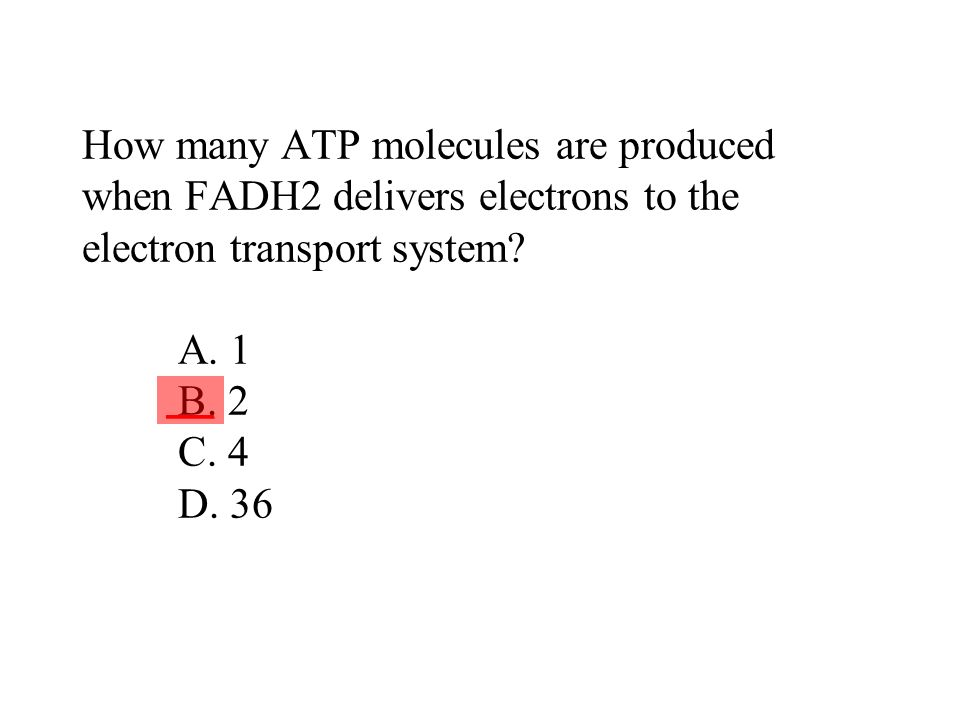 How many ATP molecules are produced when FADH2 delivers electrons to the electron transport system? A. 1 B. 2 C. 4 D. 36 ___