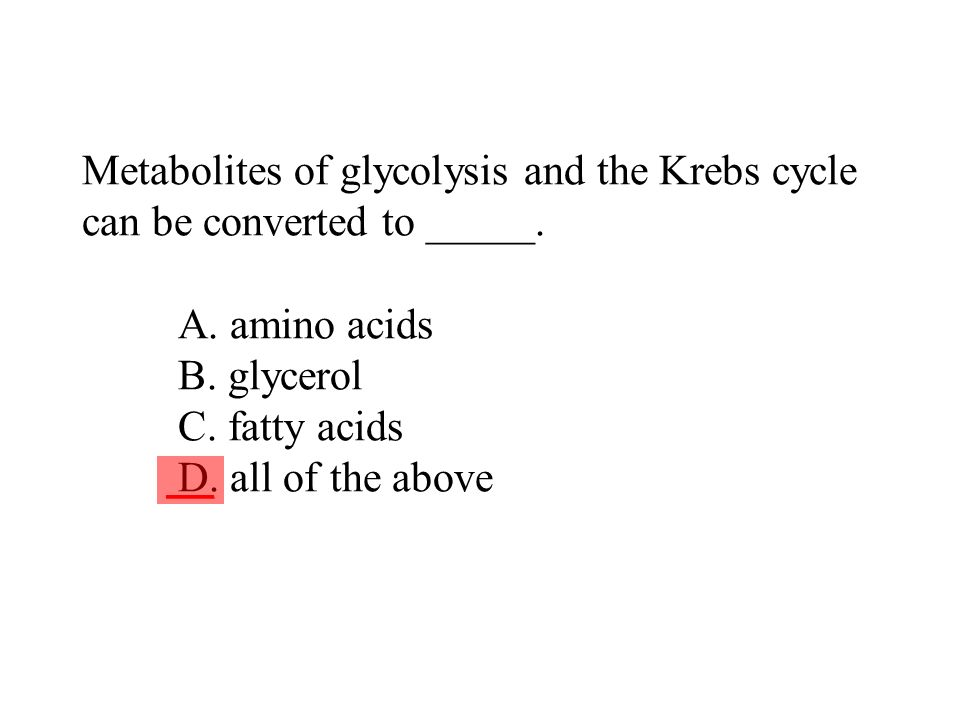 Metabolites of glycolysis and the Krebs cycle can be converted to _____. A. amino acids B. glycerol C. fatty acids D. all of the above ___