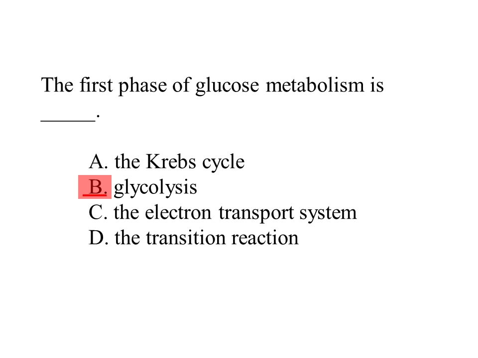 The first phase of glucose metabolism is _____. A. the Krebs cycle B. glycolysis C. the electron transport system D. the transition reaction ___