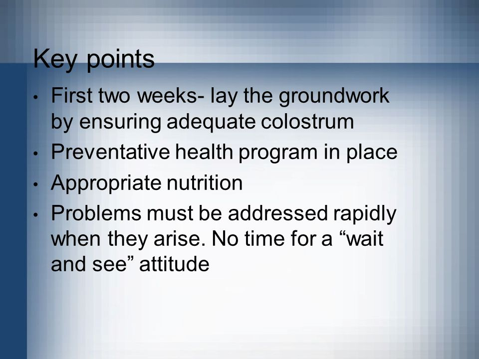 Key points First two weeks- lay the groundwork by ensuring adequate colostrum Preventative health program in place Appropriate nutrition Problems must