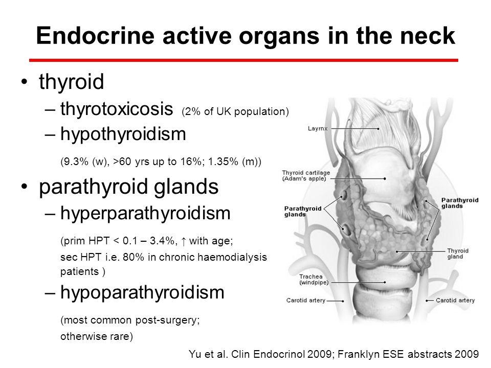 thyroid –thyrotoxicosis (2% of UK population) –hypothyroidism (9.3% (w), >60 yrs up to 16%; 1.35% (m)) parathyroid glands –hyperparathyroidism (prim H