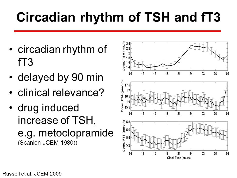 Circadian rhythm of TSH and fT3 circadian rhythm of fT3 delayed by 90 min clinical relevance? drug induced increase of TSH, e.g. metoclopramide (Scanl