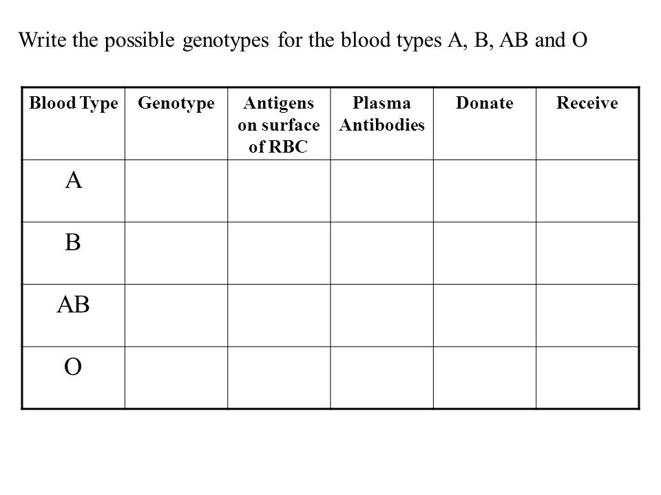 Blood TypeGenotypeAntigens on surface of RBC Plasma Antibodies DonateReceive A B AB O Write the possible genotypes for the blood types A, B, AB and O