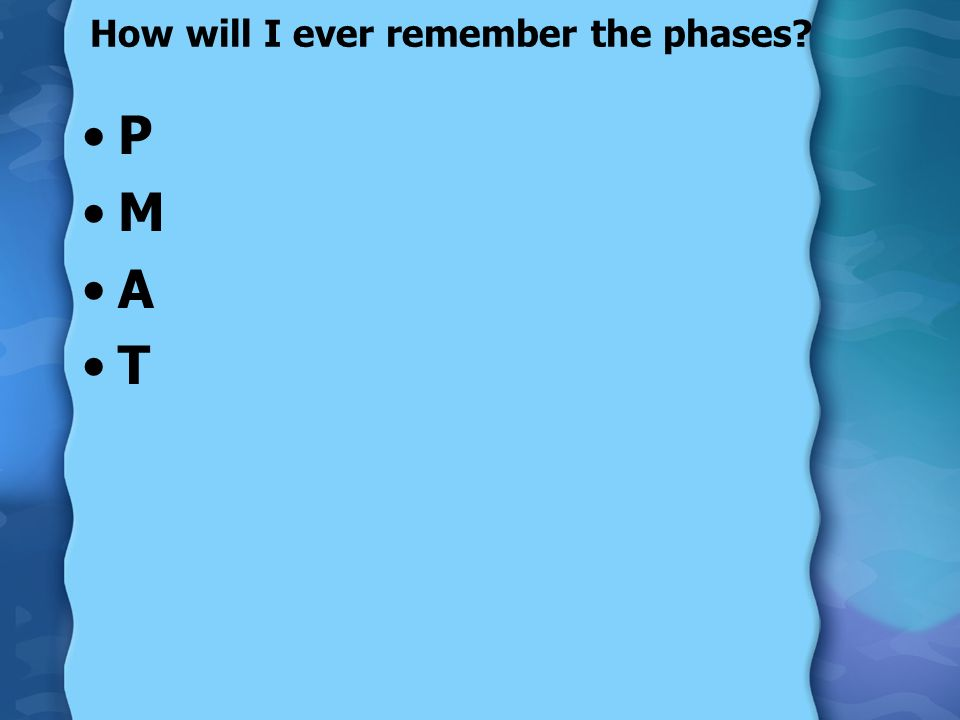 How will I ever remember the phases? P M A T