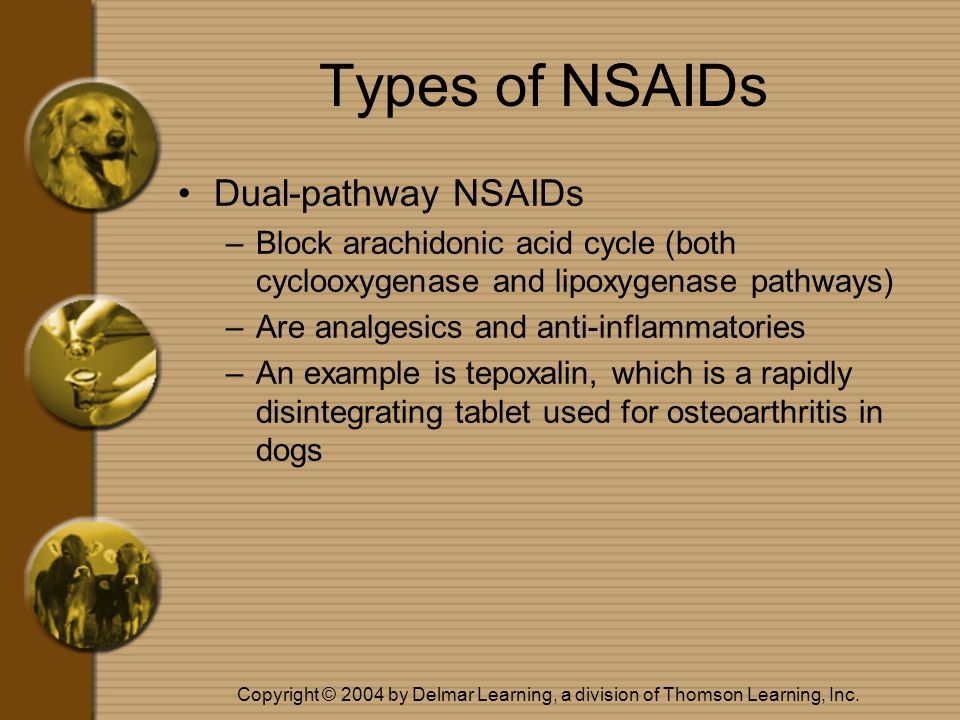 Copyright © 2004 by Delmar Learning, a division of Thomson Learning, Inc. Types of NSAIDs Dual-pathway NSAIDs –Block arachidonic acid cycle (both cycl
