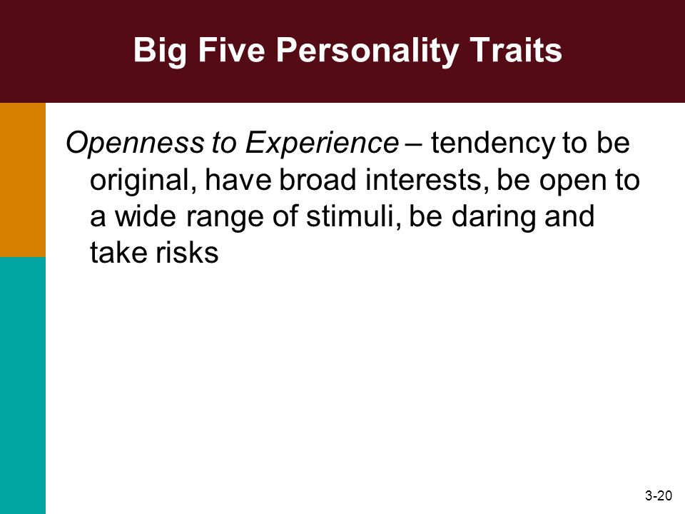 3-20 Big Five Personality Traits Openness to Experience – tendency to be original, have broad interests, be open to a wide range of stimuli, be daring