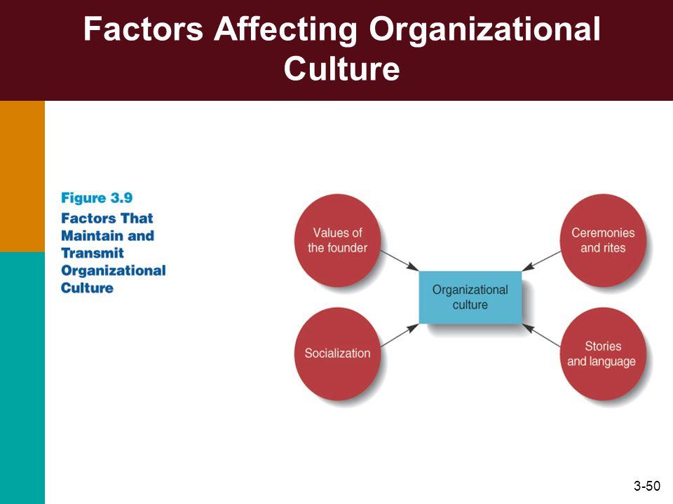 3-50 Factors Affecting Organizational Culture