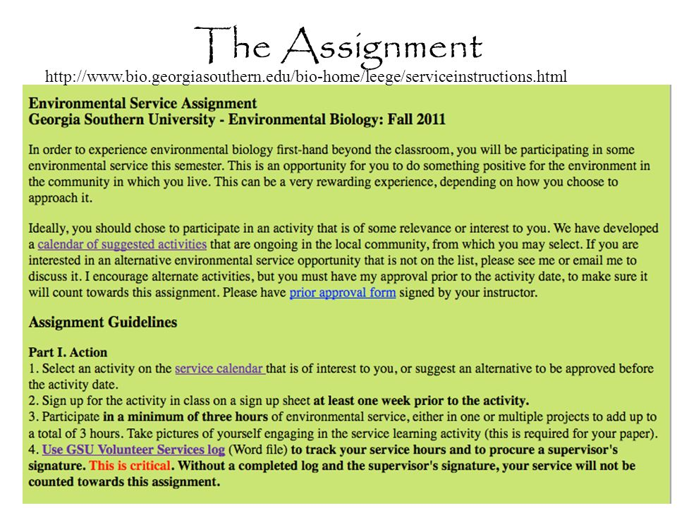 The Assignment http://www.bio.georgiasouthern.edu/bio-home/leege/serviceinstructions.html
