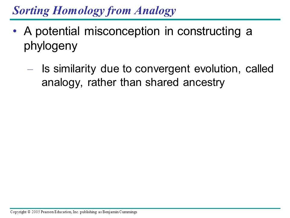 Copyright © 2005 Pearson Education, Inc. publishing as Benjamin Cummings Sorting Homology from Analogy A potential misconception in constructing a phy