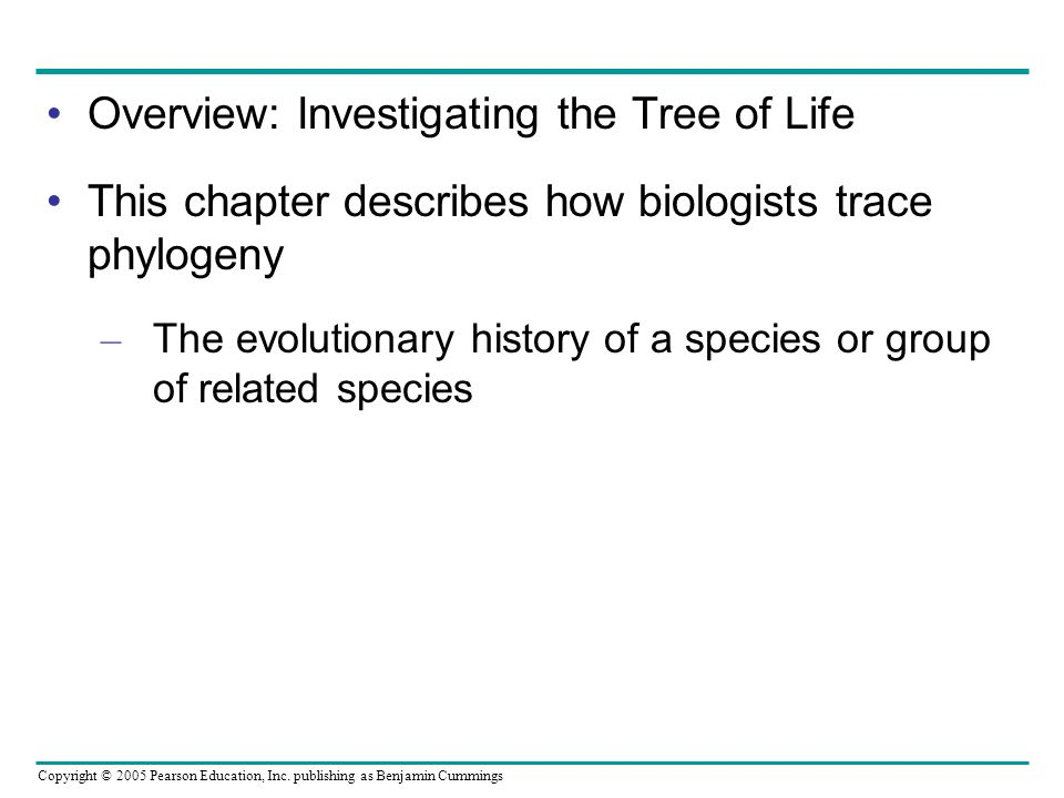 Copyright © 2005 Pearson Education, Inc. publishing as Benjamin Cummings Overview: Investigating the Tree of Life This chapter describes how biologist