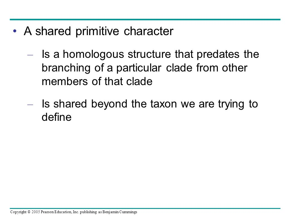 Copyright © 2005 Pearson Education, Inc. publishing as Benjamin Cummings A shared primitive character – Is a homologous structure that predates the br