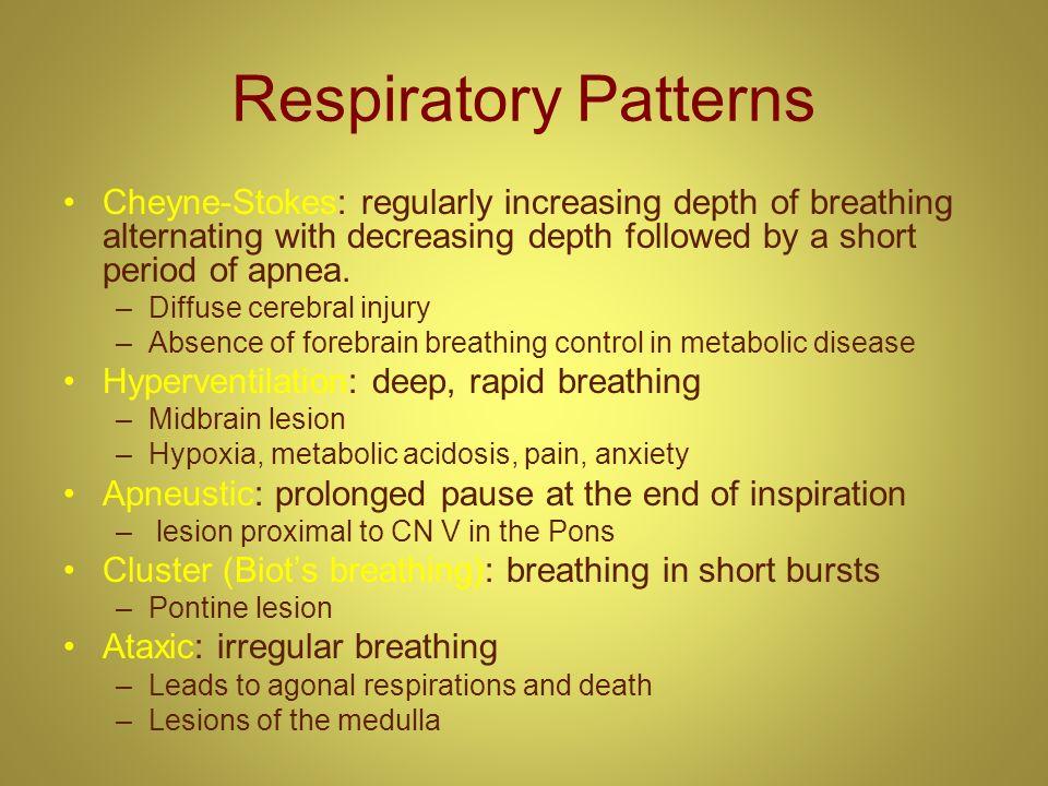 Respiratory Patterns Cheyne-Stokes: regularly increasing depth of breathing alternating with decreasing depth followed by a short period of apnea. –Di