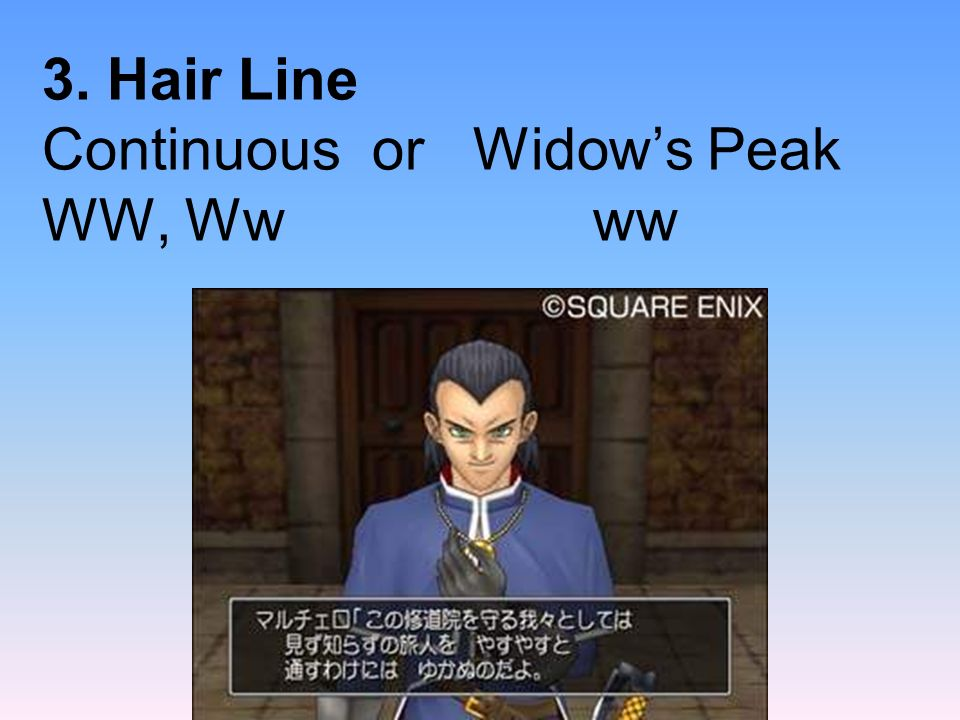 3. Hair Line Continuous or Widows Peak WW, Ww ww