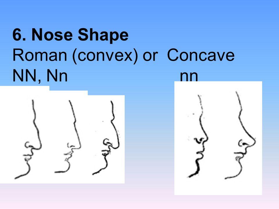 6. Nose Shape Roman (convex) or Concave NN, Nnnn