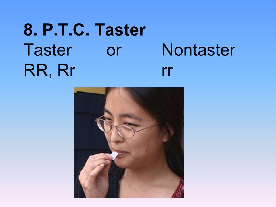 8. P.T.C. Taster Tasteror Nontaster RR, Rrrr