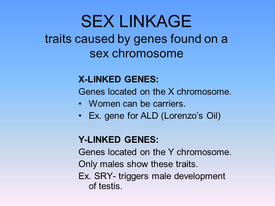 SEX LINKAGE traits caused by genes found on a sex chromosome X-LINKED GENES: Genes located on the X chromosome. Women can be carriers. Ex. gene for AL