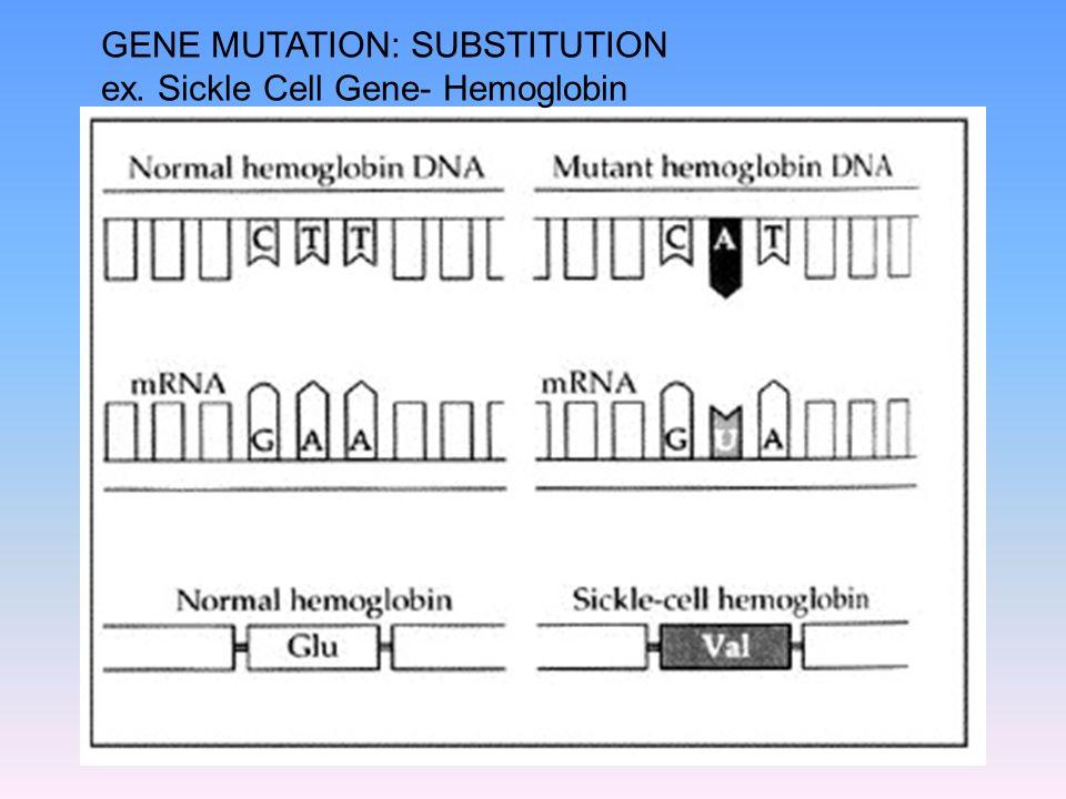 GENE MUTATION: SUBSTITUTION ex. Sickle Cell Gene- Hemoglobin