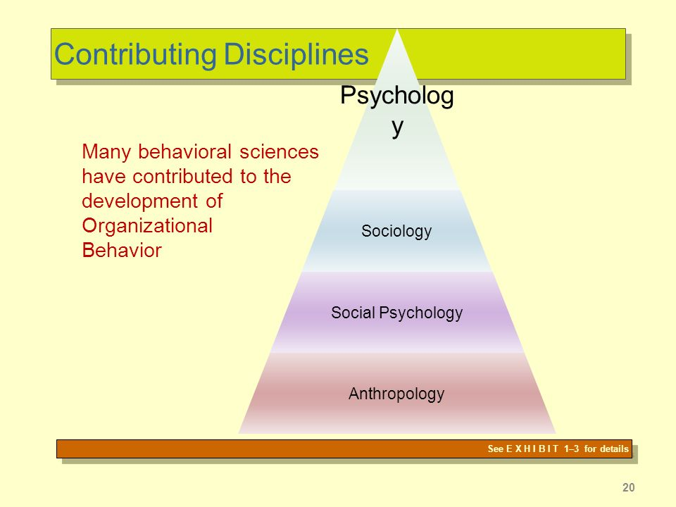 20 Contributing Disciplines Psycholog y Sociology Social Psychology Anthropology See E X H I B I T 1–3 for details Many behavioral sciences have contributed to the development of Organizational Behavior