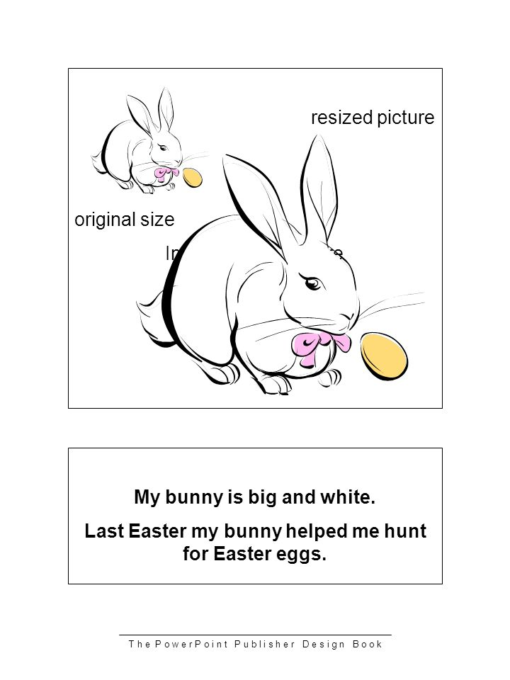 T h e P o w e r P o i n t P u b l i s h e r D e s i g n B o o k resized picture original size Insert or draw picture My bunny is big and white. Last E