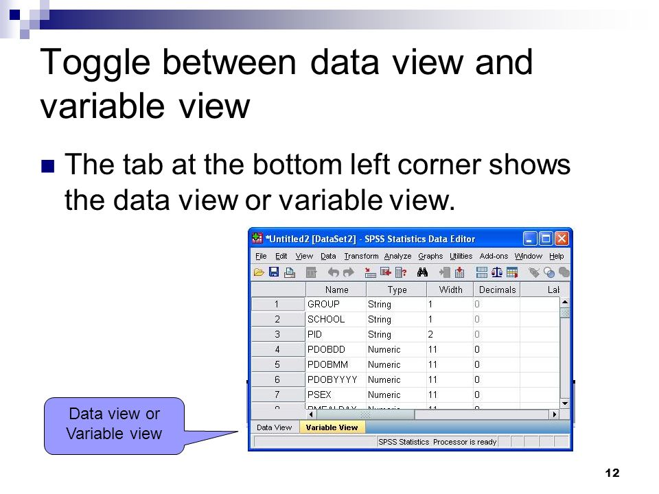 12 Toggle between data view and variable view The tab at the bottom left corner shows the data view or variable view. Data view or Variable view