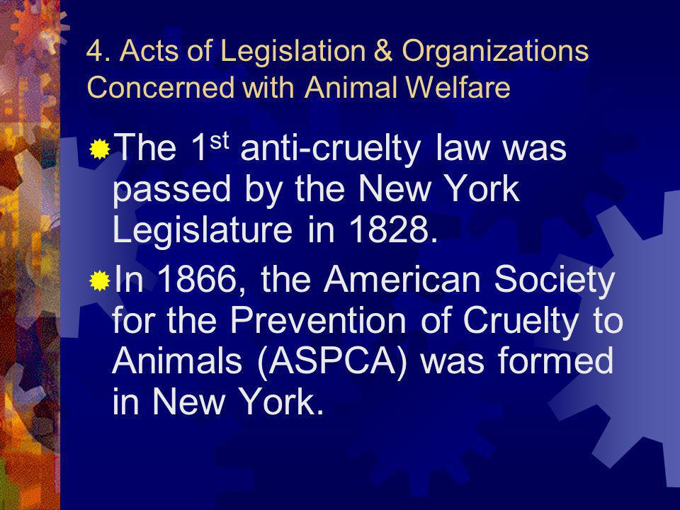 4. Acts of Legislation & Organizations Concerned with Animal Welfare The 1 st anti-cruelty law was passed by the New York Legislature in 1828. In 1866