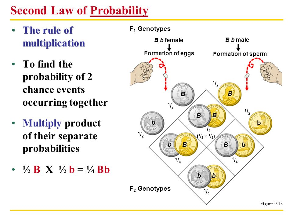 The rule of multiplicationThe rule of multiplication To find the probability of 2 chance events occurring together Multiply product of their separate