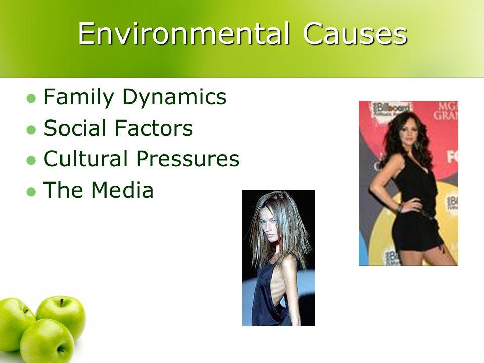 Environmental Causes Family Dynamics Social Factors Cultural Pressures The Media