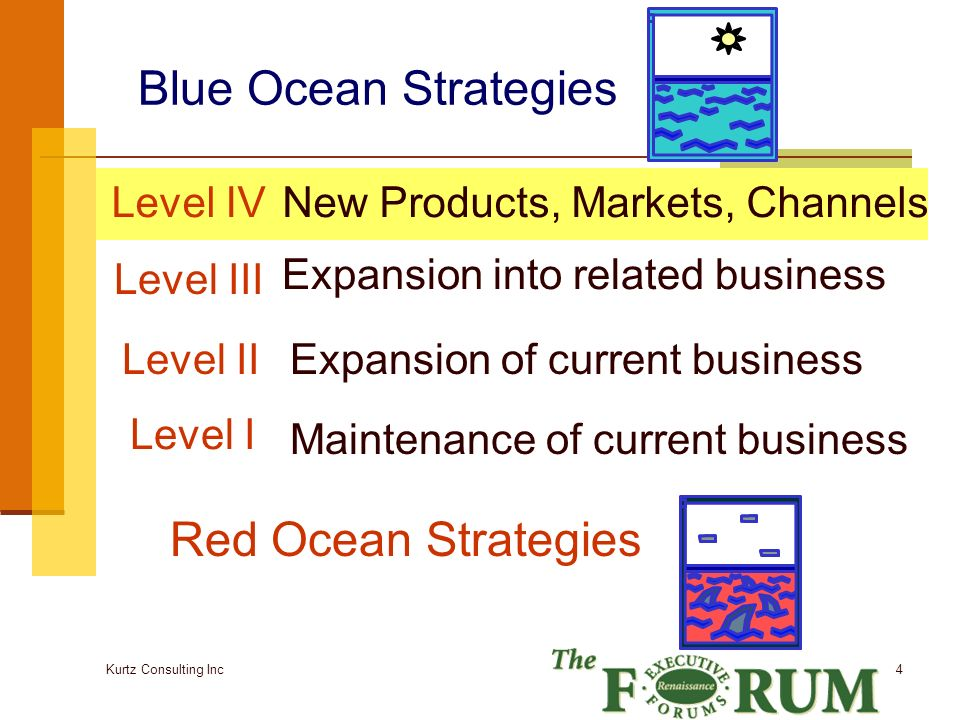 Kurtz Consulting Inc 15 More Additional Questions Look across your complementary product and service offerings Look for substitutes Look across emotion or functional appeal for your customers Look across time – what trends to you see Look across non-customers Think about partnerships where you dont have competencies R&D or manufacturing alliances Distribution alliances