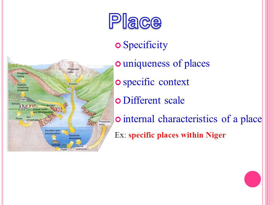 Specificity uniqueness of places specific context Different scale internal characteristics of a place Ex: specific places within Niger