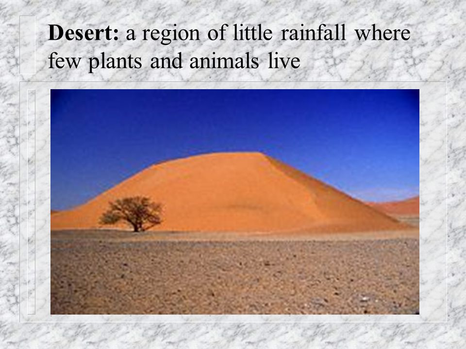 Desert: a region of little rainfall where few plants and animals live