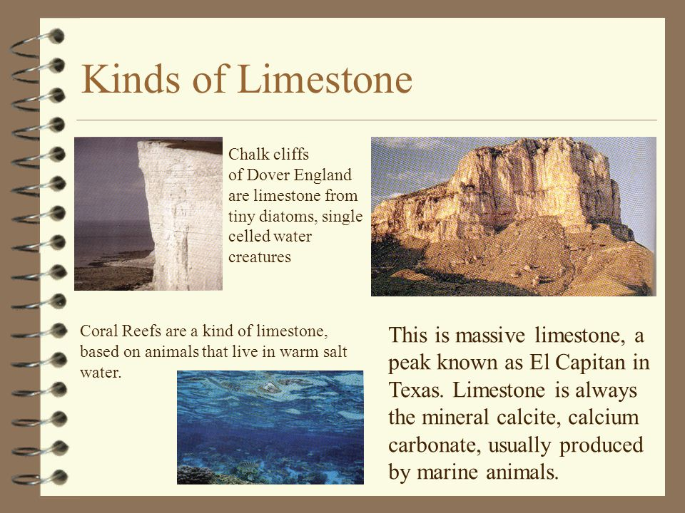 Kinds of Limestone Chalk cliffs of Dover England are limestone from tiny diatoms, single celled water creatures Coral Reefs are a kind of limestone, b